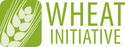wheat-initiative-logo